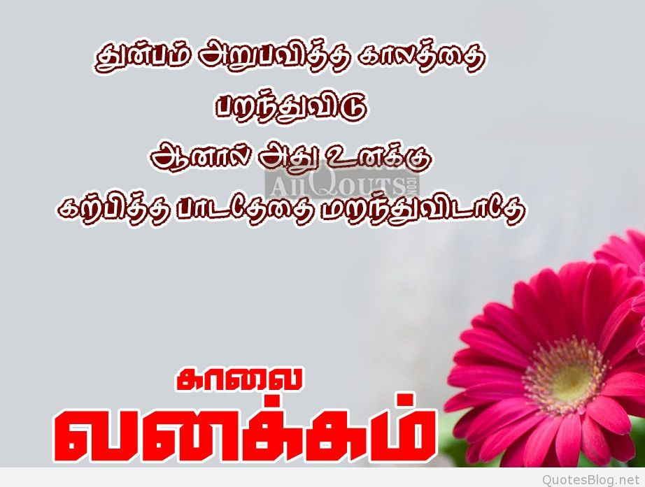 Best Good Morning Quotes In Tamil Hd Wallpapers Best Life Motivational Thoughts And Sayings Tamil Kavi
