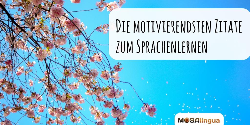 Image Result For Zitate Italienisch Deutsch