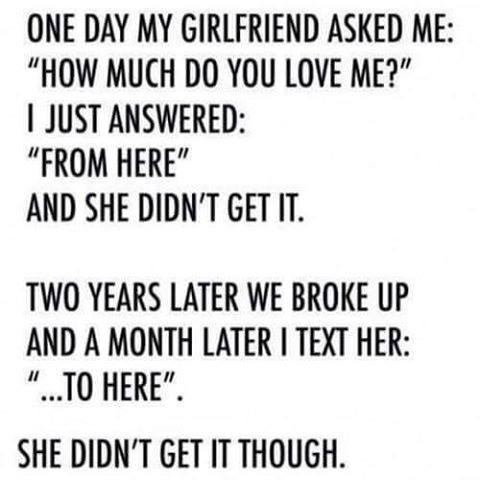 How Much Do You Love Me Funny Pictures Quotes Memes Funny Images Funny Jokes Funny P Os