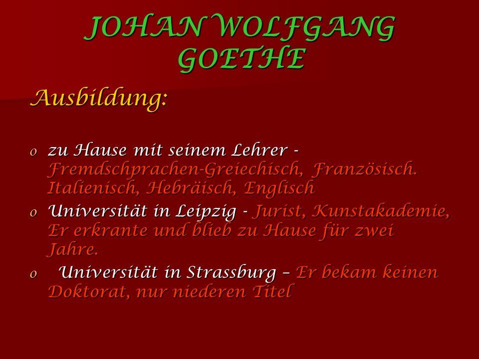 Johan Wolfgang Goethe Ausbildung