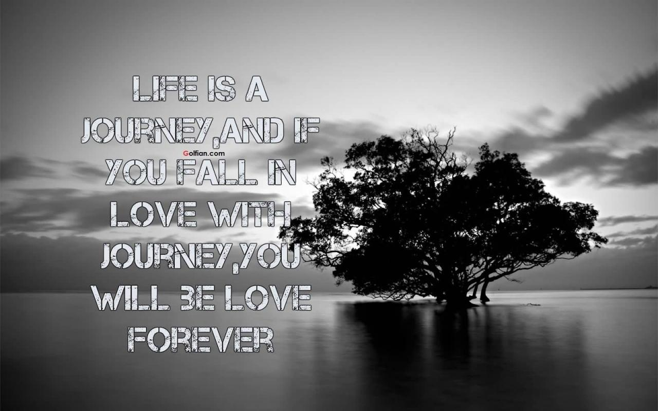 Life Love Sayings