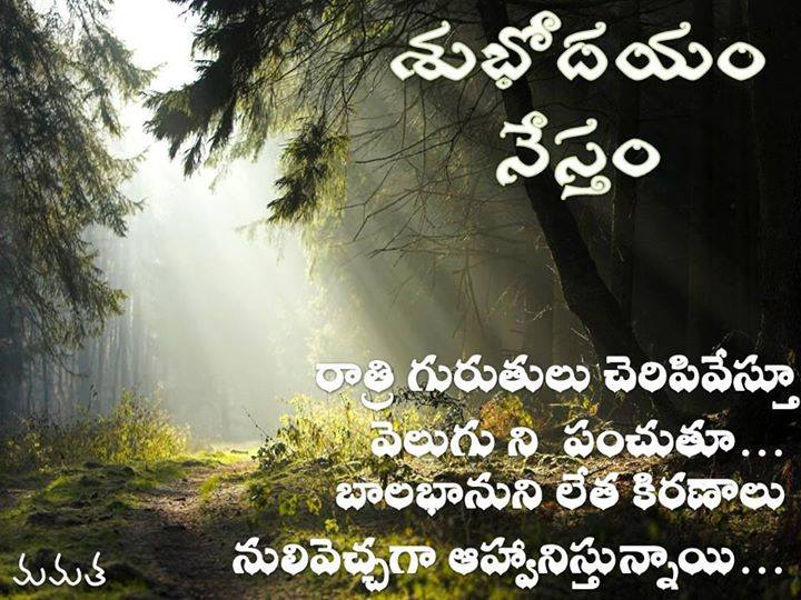 Good Morning Wishes In