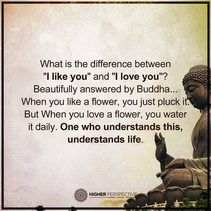 Buddha Quotes Love On Pinterest Buddha Buddha Quote And