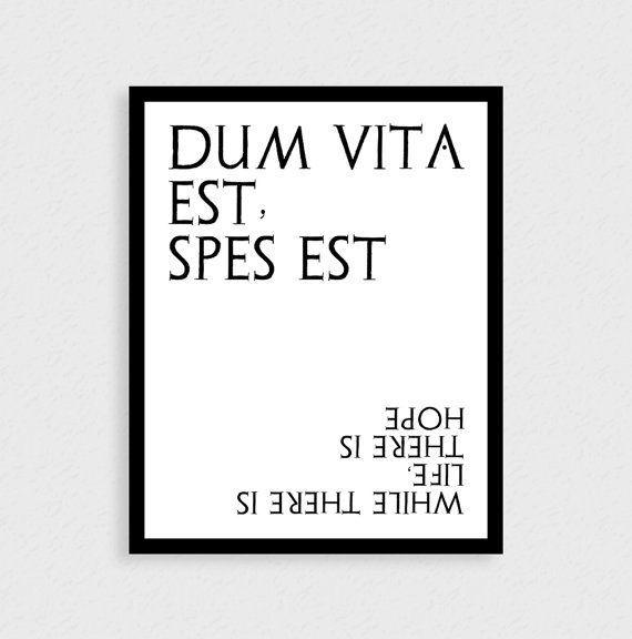 Zitate Mit  Wortern Lateinische Zitate Motivationszitate Lateinische Worter Aufmunternde Spruche Inspirierende Zitate