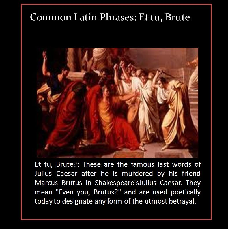 Julius Caesar Betrayal Shakespeare Recognize That