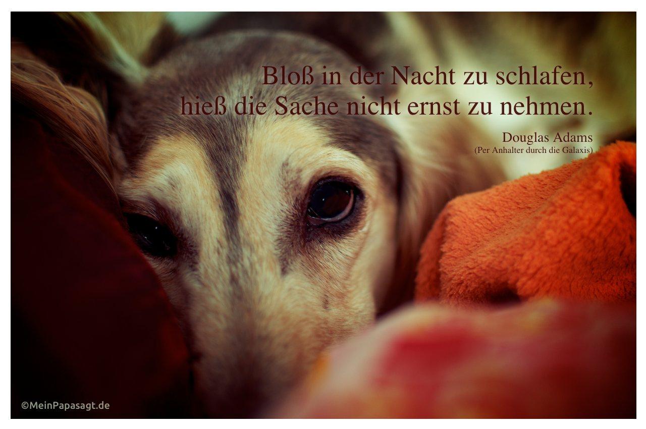 Nietzsche Zitate Schlafen | Leben Zitate