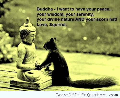 Buddha Quotes About Loveiny Buddha Archives Love Of Life Quotes