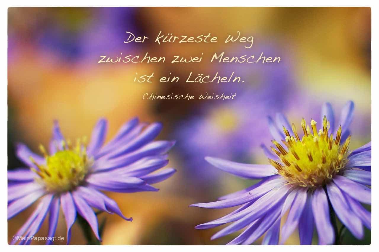 Image Result For Nietzsche Zitate Kultur