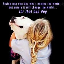 Quotes On Dogs Love