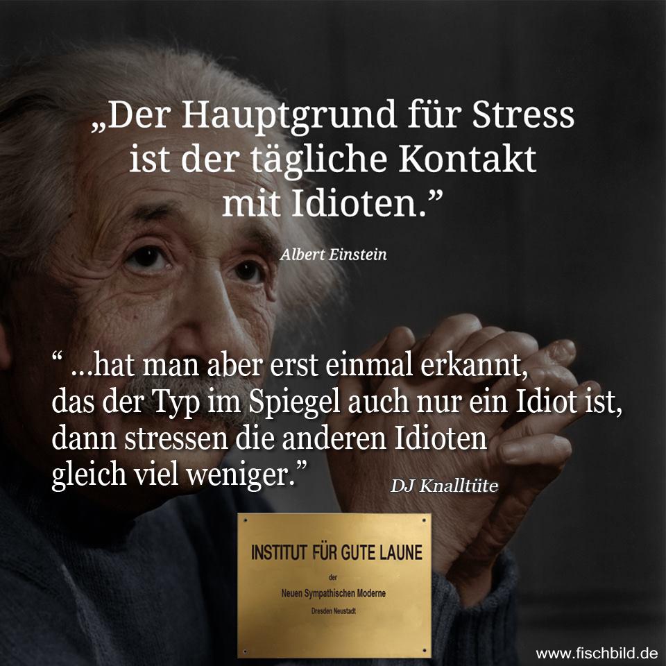 Albert Einstein Sagtzitat Der Hauptgrund Fur Stress Ist Der Tagliche Kontakt Mit Idioten Dj Knalltute Antwortet Hat Man Aber Erst Einmal Erkannt