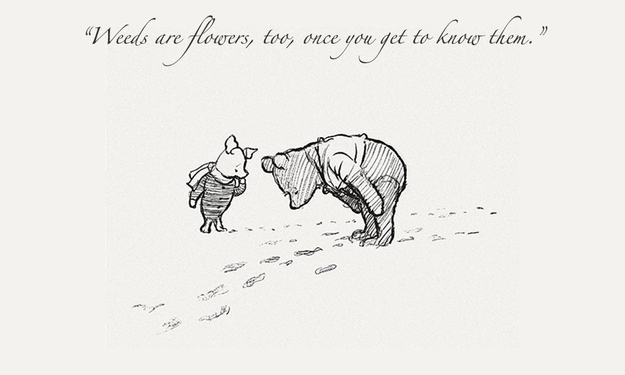 Piglet Noticed That Even Though He Had A Very Small Heart It Could Hold A Rather Large Amount Of Gra Ude Winnie The Pooh