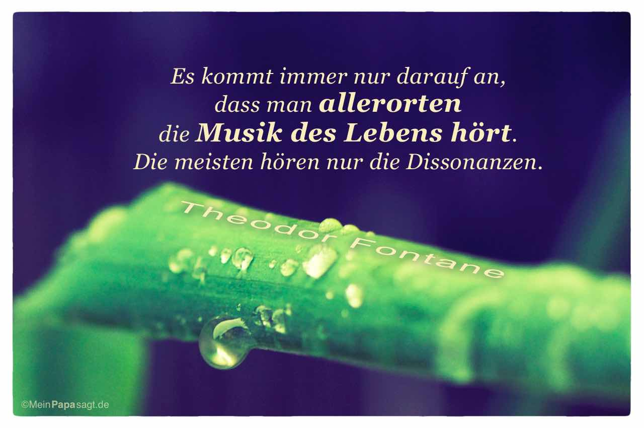 Image Result For Platon Zitate Musik