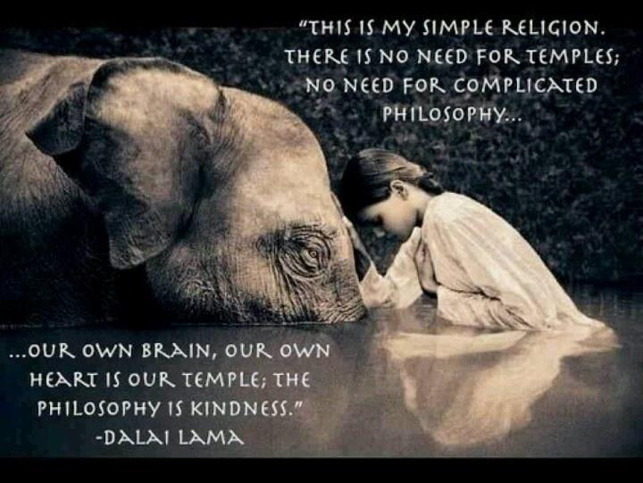 Dalai Lama Quote Quotes