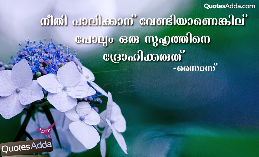 Friendship Quotes Images In Malayalam Friendship Quotes In Malayalam