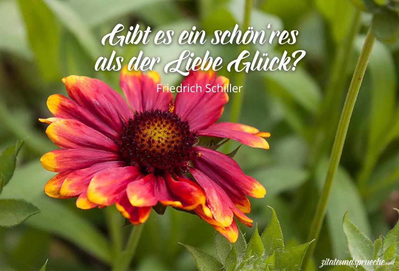 Gibt Es Ein Schonres Als Der Liebe Gluck Zitat Friedrich Schiller