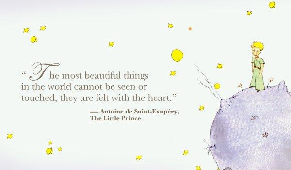 S Ist Einer Der Schonsten Und Inspirierende Zitate Aus Der Kleine Prinz Ich Liebe Es Wirklich Der Autor Schafft Es So Viel In Nur Ein Paar Worte