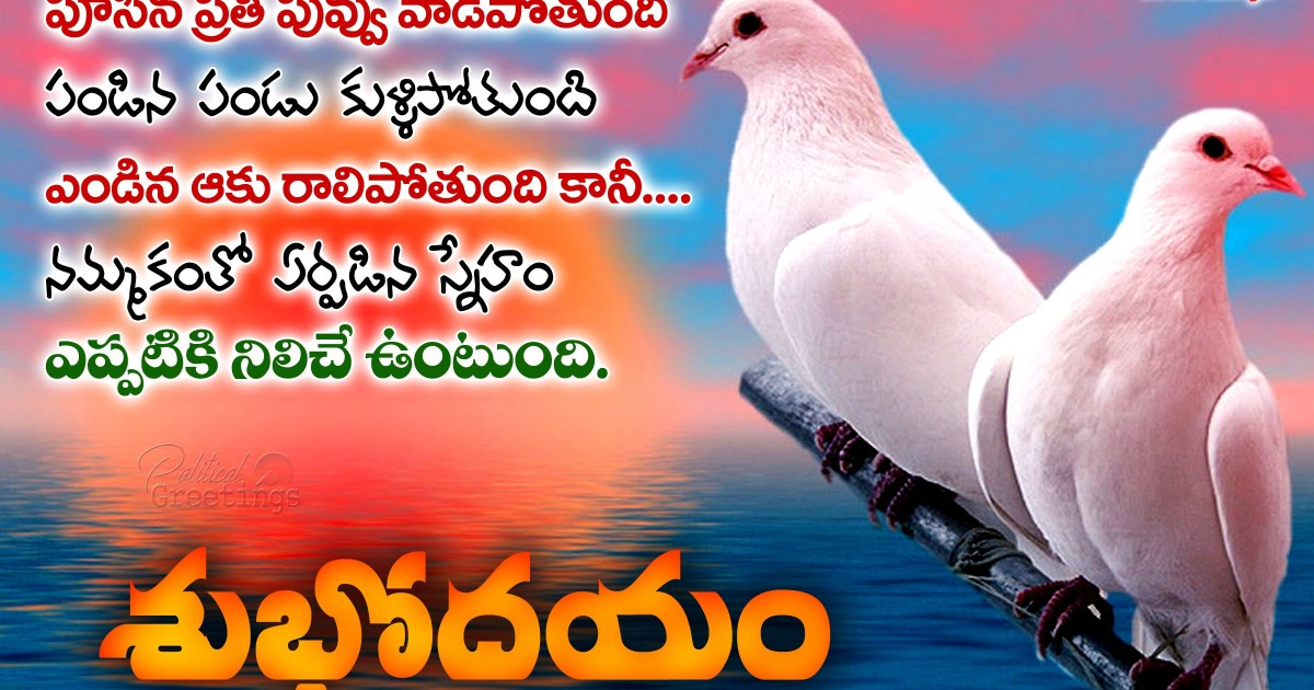 Latest Good Morning Quotes And Sayings With Best Friendship Messages