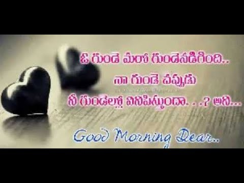 Lovely Fresh Good Morning Messagesquotationsimagesmessages