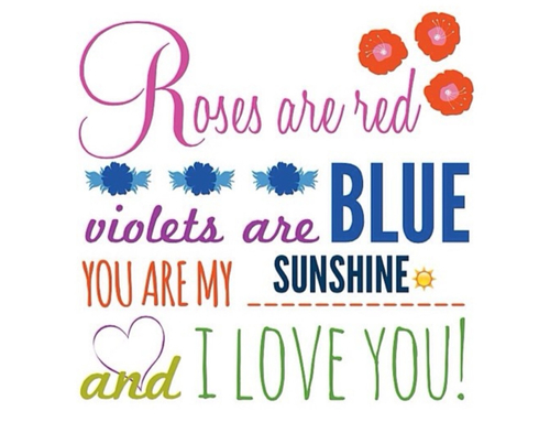 Rose Violets And Love Image