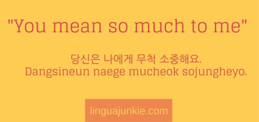 Linguajunkie Com