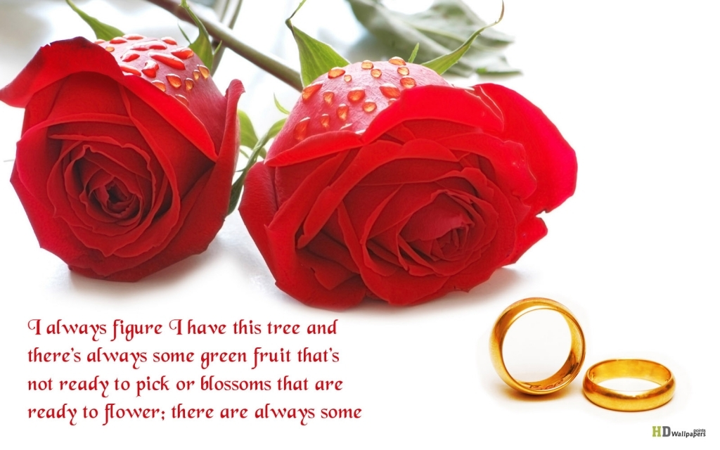Love Quotes And Flowers Flower Love Quotes Quotesgram