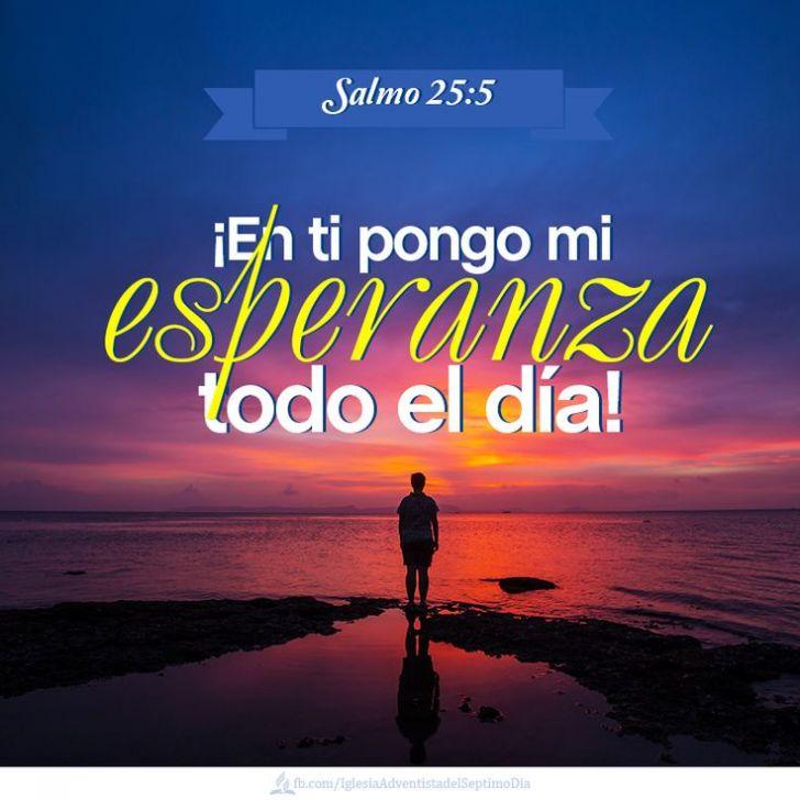 Love Verses In The Bible In Spanish Love Quotes From The Bible In Spanish Image