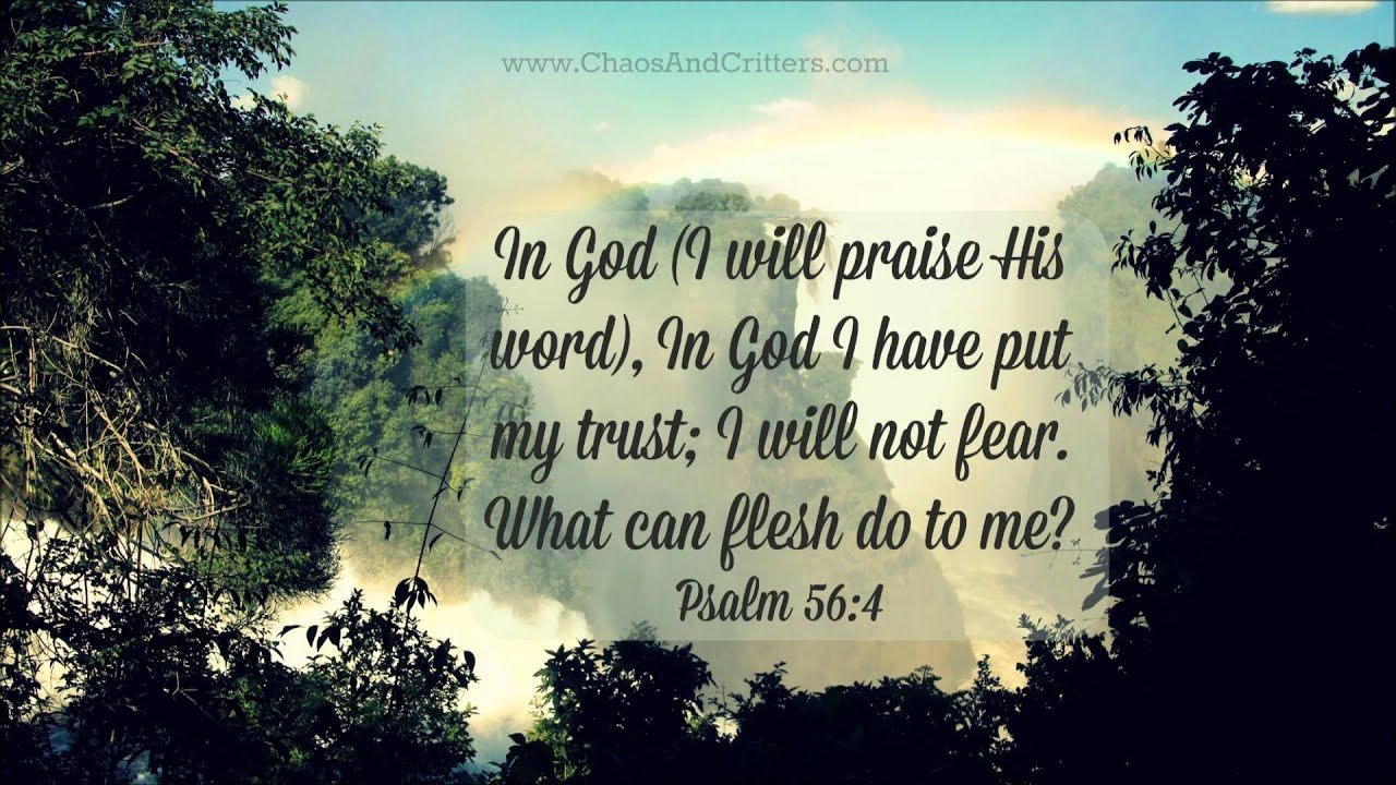 Daily Bible Verse Psalm  Daily Inspiration And Encouragement From The Bible You