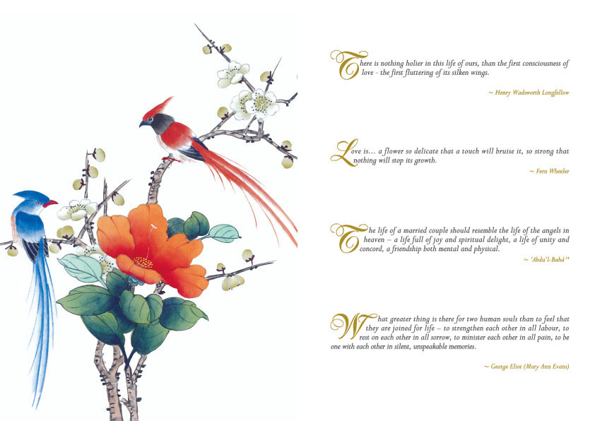 One Of The Pages Of The Birds Of Love Gift Set