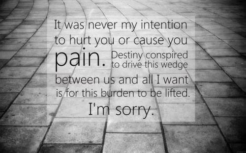Sorry My Love Quotes And Sayings