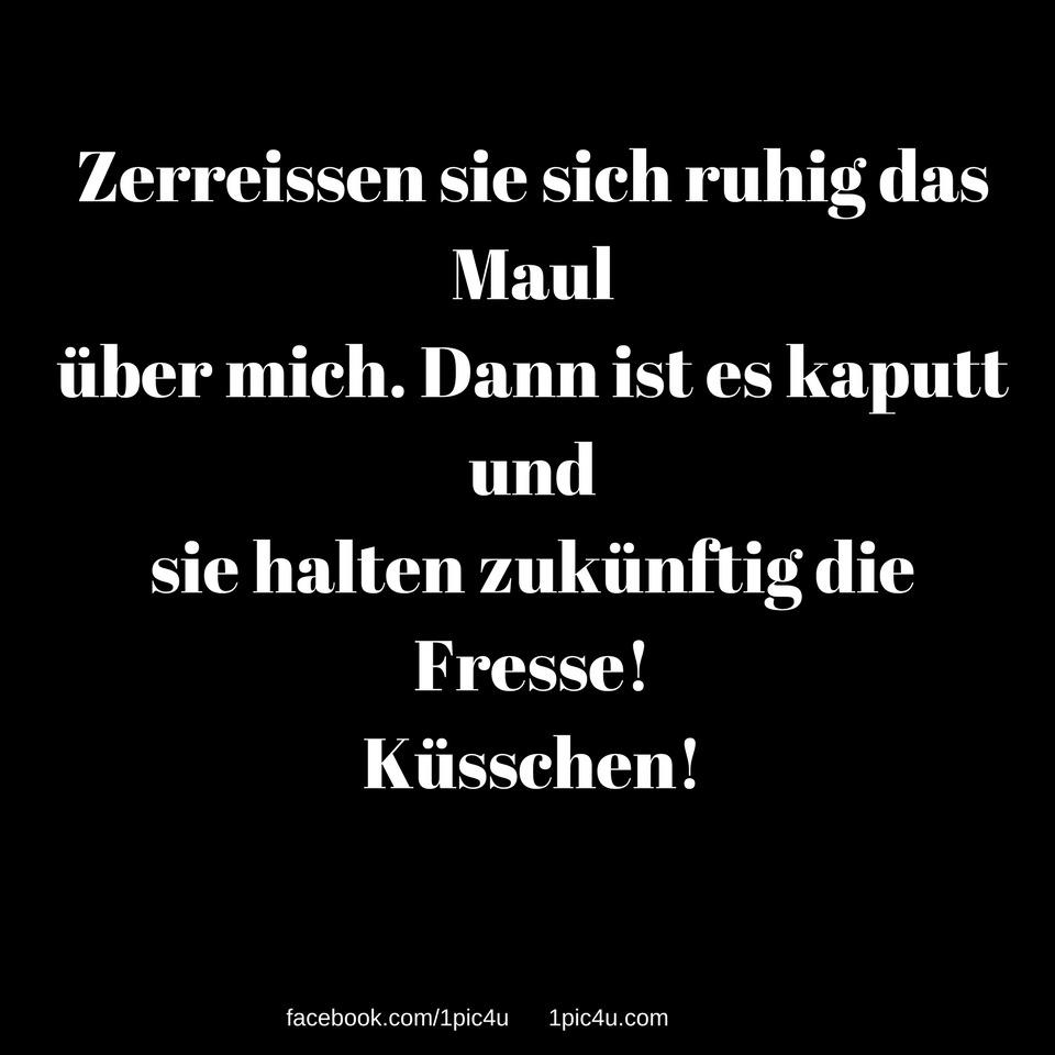 Whatsapp Status Lustig Liebe Spruch Spruche