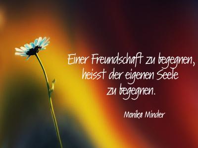 Image Result For Zitate Aus Der Kleine Prinz Freundschaft