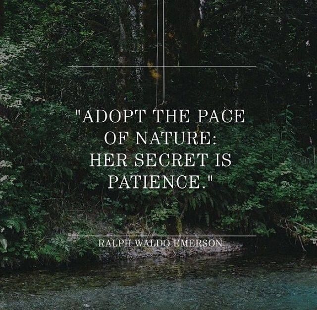 Ralph Waldo Emerson Quotes To Live By