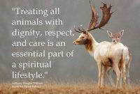 Fuelled With Comp Ion Empathy Respect And Love For All Earthlings Em