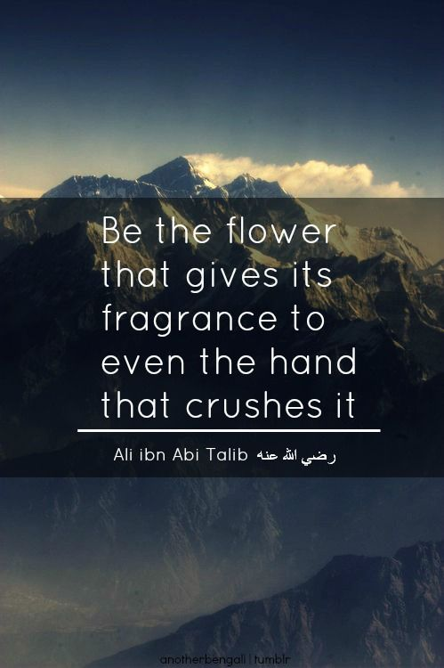 Inspirational Quotes About Strength Flower Tolerance Forgiveness Islamic Wisdom