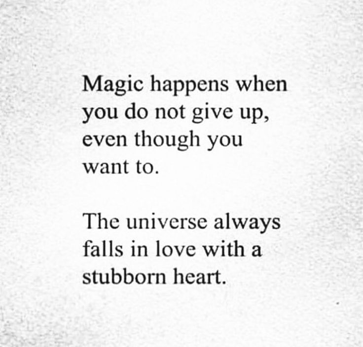 Magic Happens When You Do Not Give Up Even Though You Want To The Universe Always Falls In Love With A Stubborn Heart