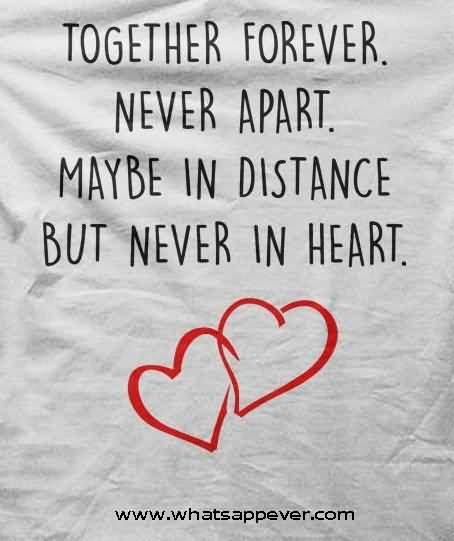 Unique Love Quotes Awesome Best  Unique Love Quotes Ideas On Pinterest Romantic Quotes
