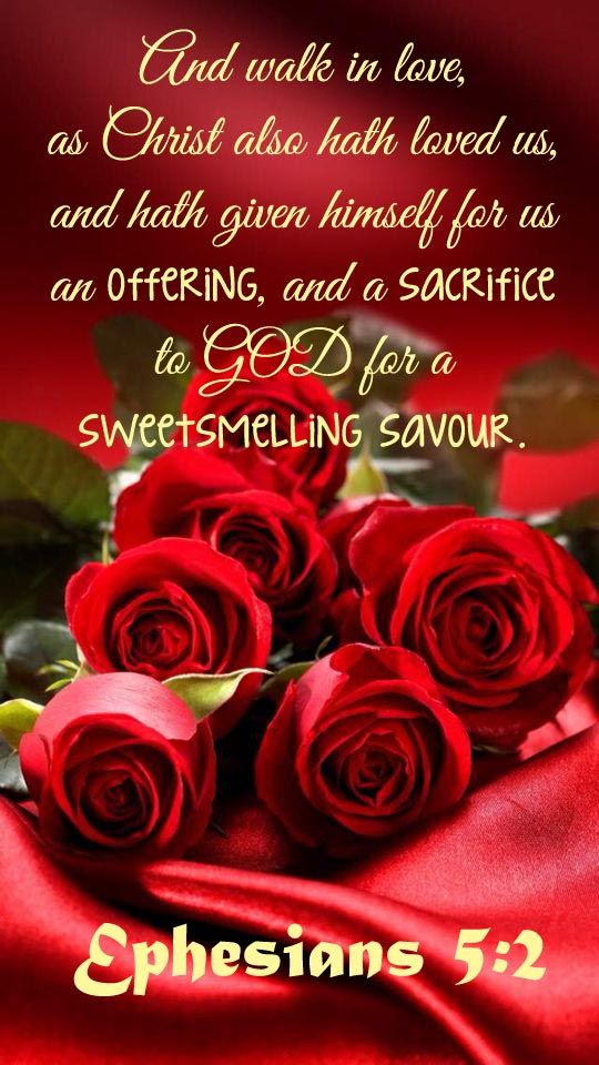 Spreads Love Beyond What We See And Know As A Sweet Smelling Savour