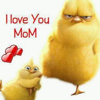 I Love My Mom Quotes Funny Jokes Hilarious Images Awesome Wallpapers Pictures