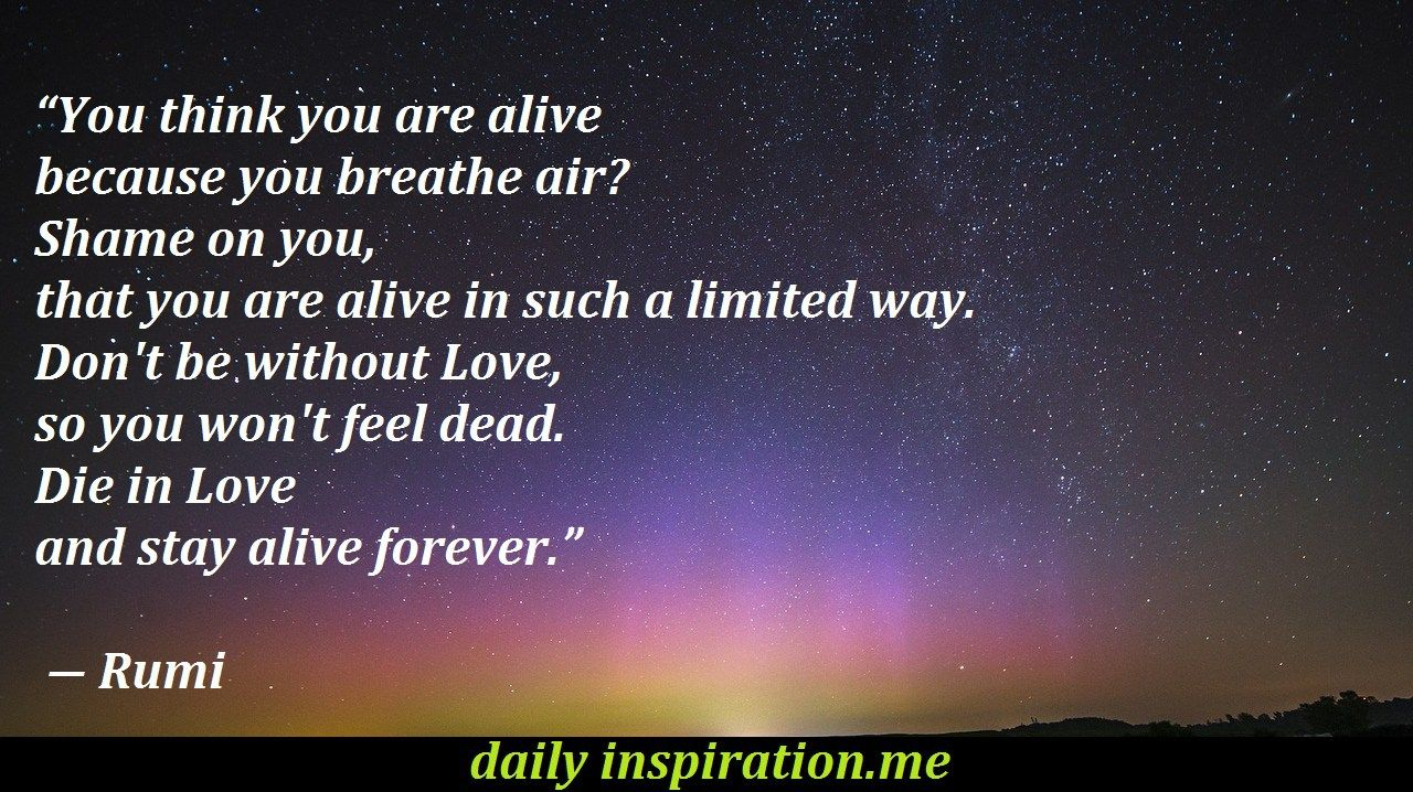This Article Contains Inspirational And Exhilarating Rumi Love Quotes Rumi Was A Persian Poet Theologian And Sufi Mystic