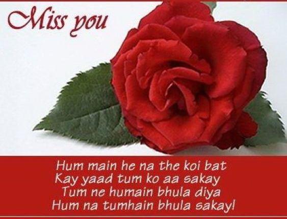 Red Rose Love Quotes Digg Stumbleupon Del Icio Us Twitter Technorati
