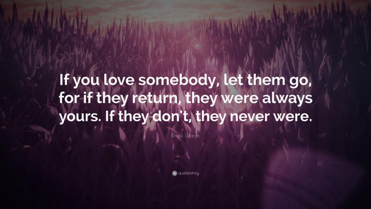 Khalil Gi N Quote If You Love Somebody Let Them Go For If