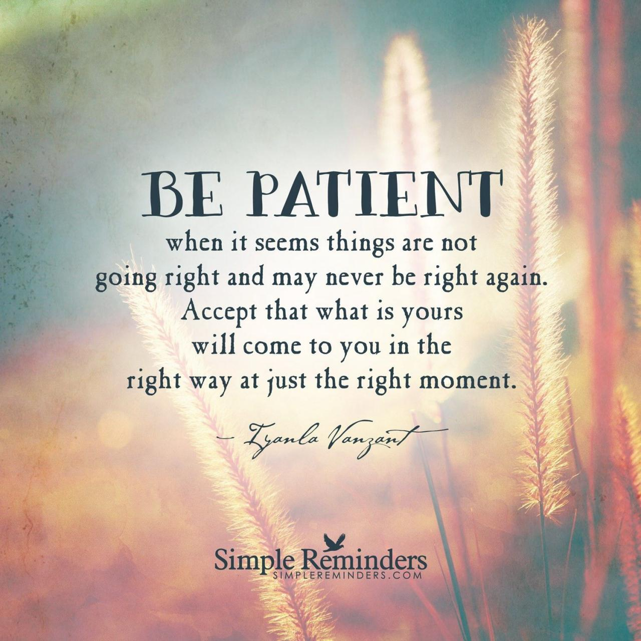 Be Patient Quote By Iyanla Vanzant