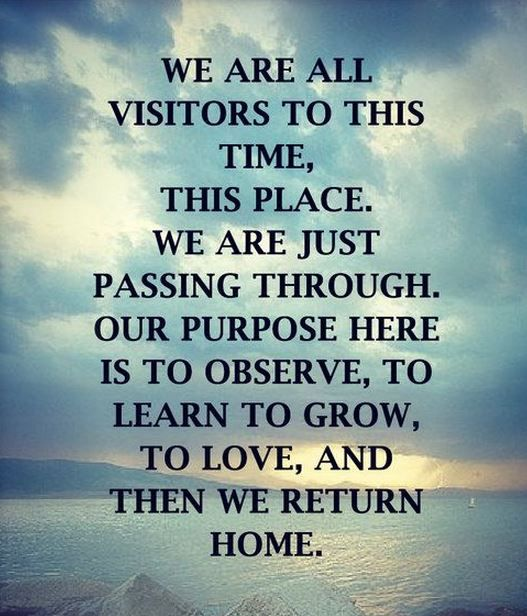 We Are All Visitors To This Time This Place We Are Just P Ing Through Our Purpose Here Is To Observe To Learn To Grow To Love And Then We Return