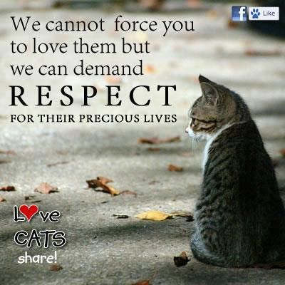 Love Them And Respect Them