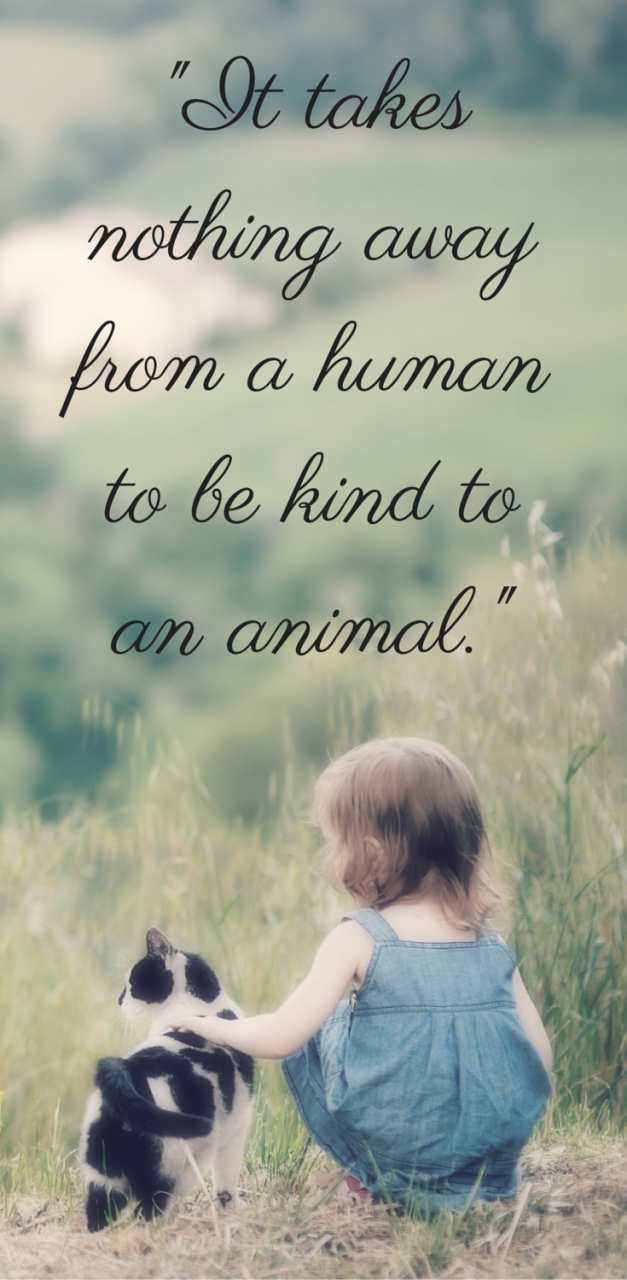 The Dodo For Animal People Animal Love Quotesanimal