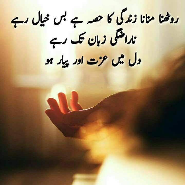 Urdu Quotes Qoutes Feelings Poetry Dating Quotations Quotes True Words Quote