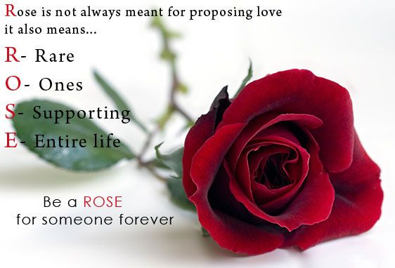 Happy Rose Day Quotes For Boyfriend Girlfriend Husband Wife Love Messages Pinterest Friend S Book Glitter Graphics And Horoscopes