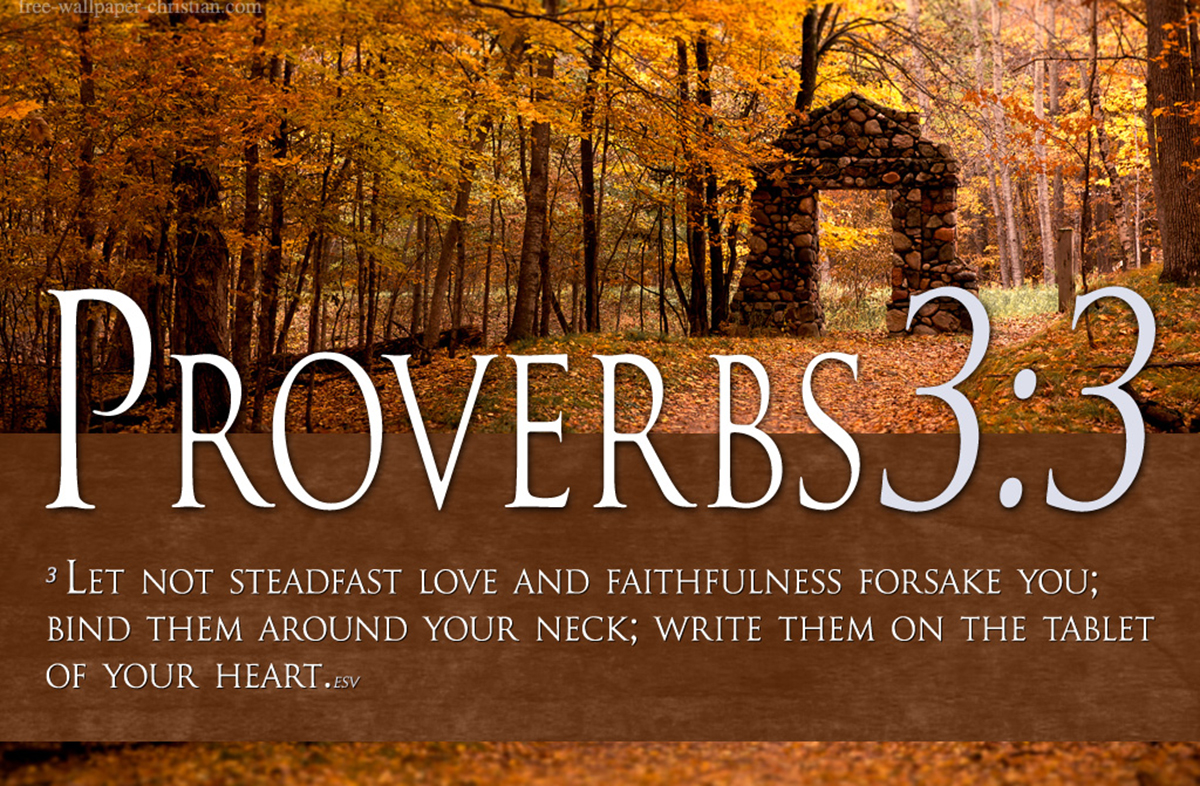 Bible Verses On Love Proverbs  Scripture Christian Hd Wallpaper