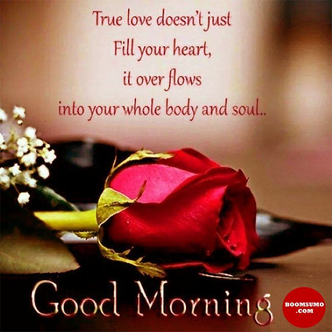 Good Morning Quotes Love Sayings True Love Doesnt Just Fill Your Heart