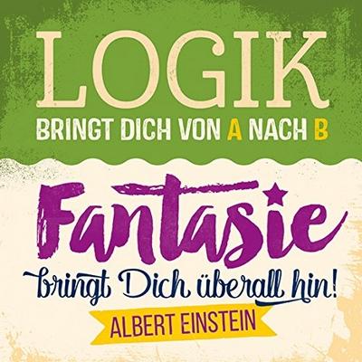 Logik Bringt Dich Von A Nach B Fantasie Bringt Dich Uberall Hin Albert Einstein